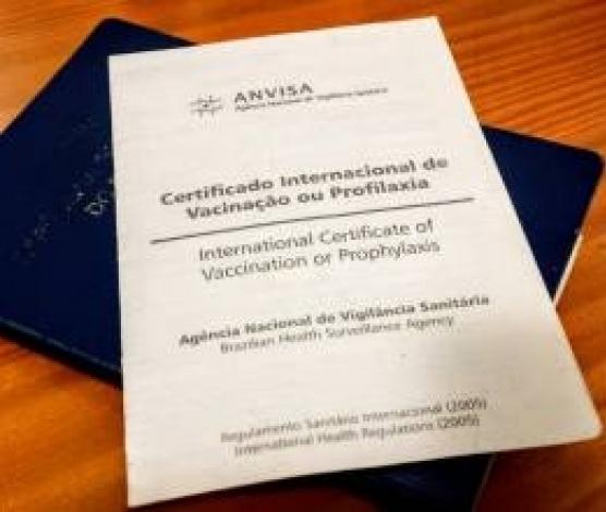 Imagem retirada de http://sertaozinho.sp.gov.br/conteudo/saiba-como-emitir-o-certificado-internacional-de-vacinacao-ou-profilaxia.html#.XGFkBKCnfcc