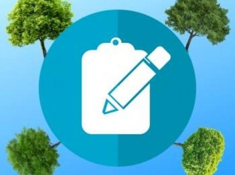 Gestão Participativa: um novo jeito de pensar a arborização
